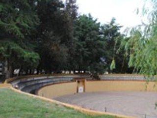 Falcao Farm