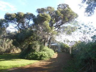 3BR Cottage in bush setting by the sea, Kingscote