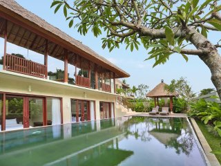 Ricepaddy 2BR Pool Villa near Ubud