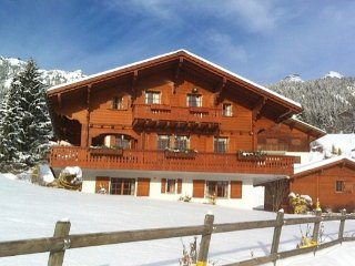 Luxury Alpine Escape - Six bedroom Chalet, Leysin