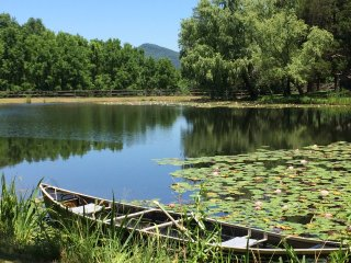 100 Acre Farm, secluded swim, fish, hike and relax, Townsend