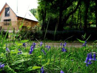 Bluebell Cottage Glencoe