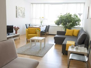 City smile: spacious & modern studio in the center, Vienna