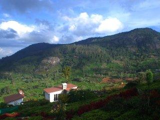 Planters Punch : Brahmi Villa