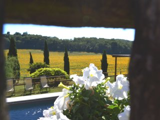 Charming private Villa,Pool,Hot tub,Wi-Fi, near Siena - SPECIAL PRICES 2017!!!