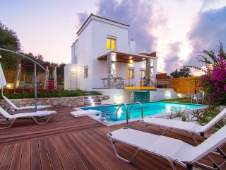 Villa Mikhail - Indoor Jacuzzi - Swimming pool & Playground
