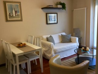 Modern & cosy 1 bedroom apartment  downtown, Alba