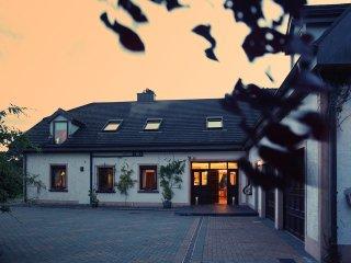Puckane, Lough Derg, County Tipperary - 11499, Dromineer