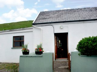 Brandon, Dingle Peninsula, County Kerry - 4050