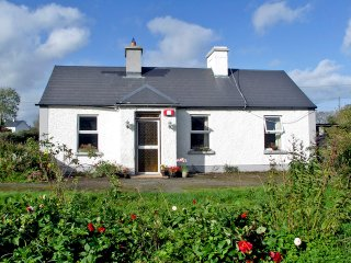 Portumna, Lough Derg, County Galway - 5141