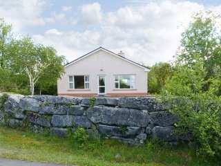 Ballinrobe, Lough Mask, County Mayo - 5207