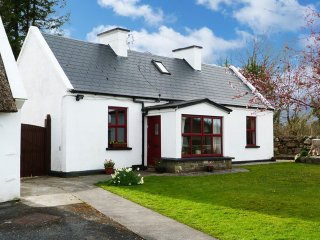 Gort, The Burren, County Galway - 5926
