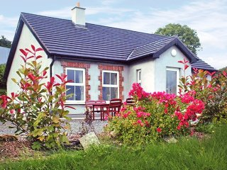 Lackan, Wicklow Mountains, County Wicklow - 6704