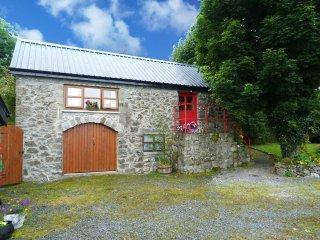 Mayoabbey, Ballyglass, County Mayo - 9744