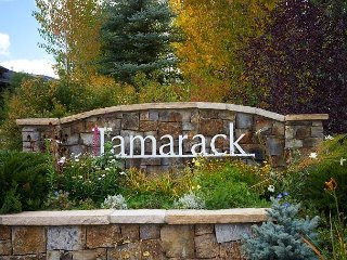 2BR, 2BA Tamarack Townhome Across from Treehouse Ski School - Easy Park