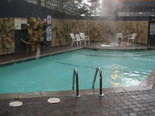 Vacation Rentals Tahoe Seasons Resort, Stateline