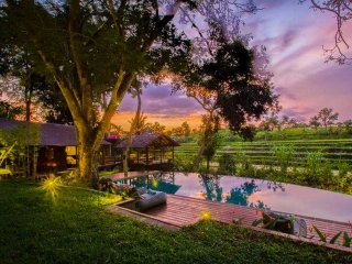Villa2 BR with infinity pool ricefield view canggu