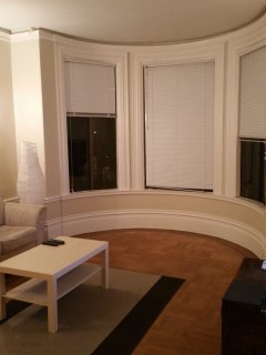 Furnished 1-Bedroom Apartment at Page St & Central Ave San Francisco