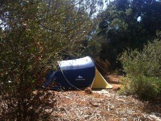 Camping Nature, Algaida