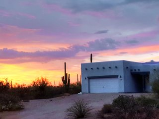 Nature Desert Home In The Saguaro Forest West Tucson