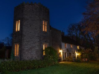 The Tower (TOWER), Abergavenny