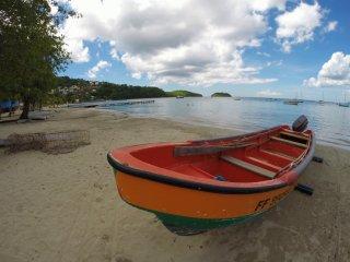 Le Dauphin de l'Anse