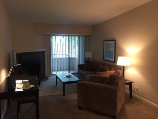 Furnished 2-Bedroom Apartment at Westminster Dr & Hastings St Naperville