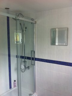 Feature shower room