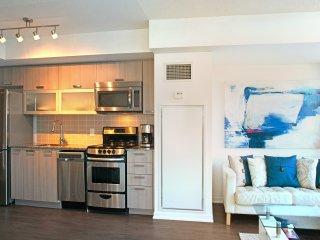 New, Modern, Luxury Condo in the Heart of Toronto
