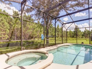 Dog-friendly home w/ private pool & spa, 9 miles to Disney - snowbirds welcome!