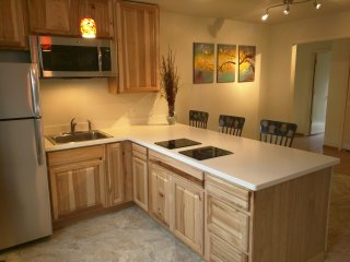 Relaxing, Remodeled Midtown Apartment, Anchorage