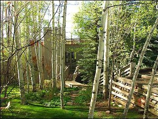 Large 3 Bedroom with Yard - Rooftop Deck (2161), Snowmass Village