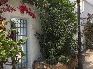 Bedar,Andalusie Beautifull villa close to sea, Bédar