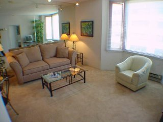 SPOTLESS AND VIBRANT FURNISHED 1 BEDROOM 1 BATHROOM CONDOMINIUM, San Francisco