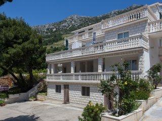 Apartments Villa Dingac-One Bedroom Apartment No.4