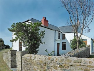 Panteurig Farmhouse (539), Goodwick