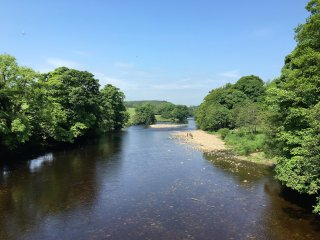 River Tees, where Raygill wood meets the river