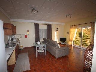Apartment Miradouro - Calheta - Alojamente Local T1