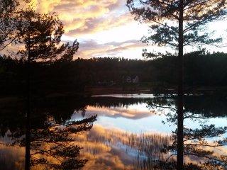 Bjørkeskogen, Froland Verk