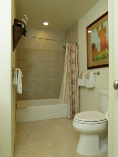 Second full upstairs bathroom adjacent to guest and twin bedrooms as well as a half bath downstairs.