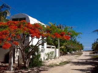 At 100 meters  from the sea, fully furnished house, Progreso