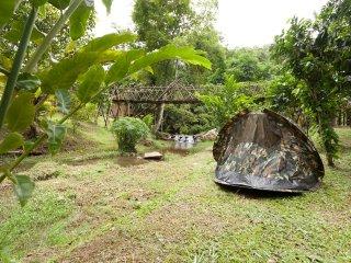 DreamCaught Campsite