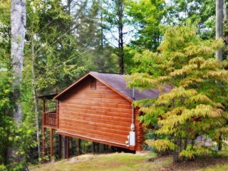 Mountain Laurel Cabin in the Pigeon Forge Area