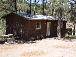 Chickadee Cabin | 6, Hill City
