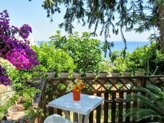 Traditional house 600m to the beach, Ville-di-Pietrabugno