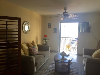 Special Offer $99 2BD Old SJ Apt with a view!, San Juan
