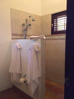 The Garden Master Suite's indoor shower