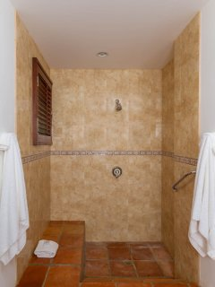 The Guest Suite's indoor shower