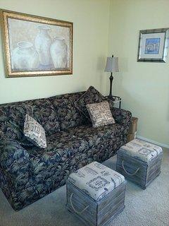 Den with LazyBoy sleeper sofa