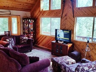 "Peaceful ""Mountain Getaway"" located in a quiet area of Blue Lake Springs, Arnold"